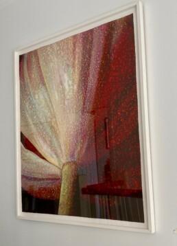Tim Maguire - Striated Tulip